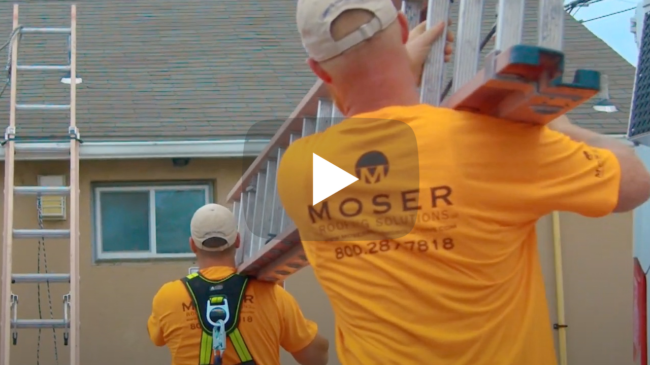 roofing team with ladders